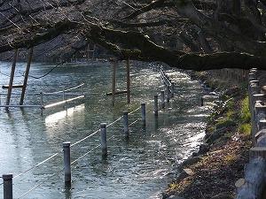 お池の氷り2