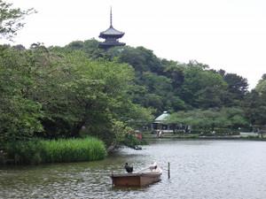三渓園の大池