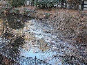 凍るひょうたん池