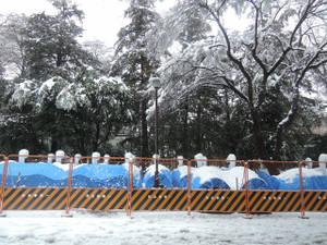 1月18日。休業中のスワンボートに雪