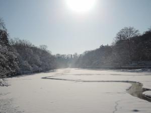 水を抜いたら雪が積もってやっぱりちゃっぷん♪できない池